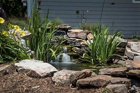 What's Trending in Landscaping