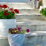 10 Tips for Urban Gardening