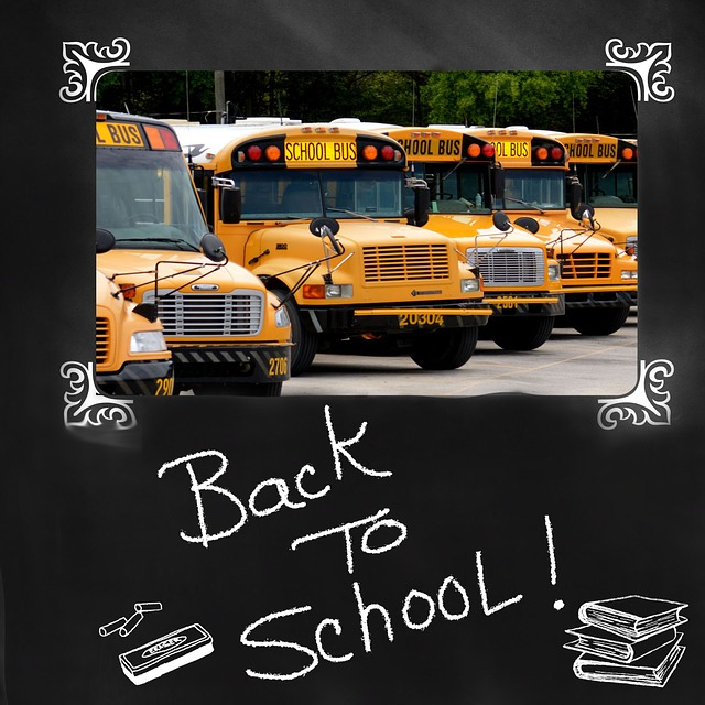 Red Cross Issues 10 Ways to Help Keep Kids Safe  as They Head Back to School